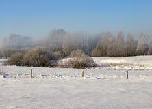 Cena do inverno fotos de stock
