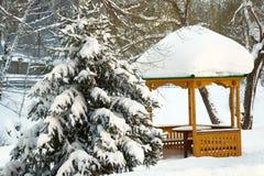 Cena do inverno. imagem de stock royalty free
