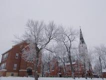 Cena do inverno da igreja Católica Imagem de Stock