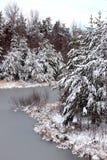 Cena do inverno de árvores geadas e da água congelada do reservatório fotos de stock royalty free