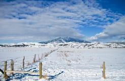 Cena do inverno de Montana Fotografia de Stock Royalty Free