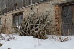 Cena do inverno na exploração agrícola Imagem de Stock Royalty Free