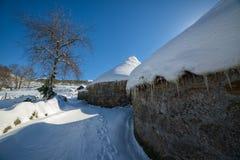 Cena do inverno na vila coberto de neve Imagem de Stock