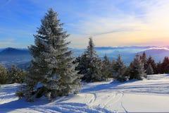 Cena do inverno nas montanhas fotos de stock royalty free