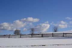 Cena do inverno no campo com cerca e árvores imagens de stock royalty free