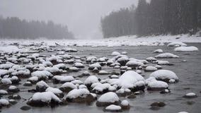 Cena do inverno no rio da montanha durante a queda de neve pesada video estoque