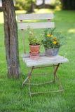 Cena do jardim Fotos de Stock Royalty Free