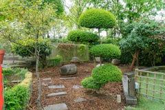 Cena do jardim em um parque em Londres Fotos de Stock