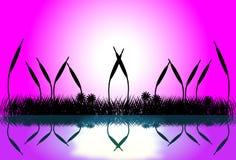 Cena do lago com a silhueta da grama no por do sol Imagens de Stock