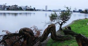 Cena do lago Merritt 4K do ` s de Oakland vídeos de arquivo