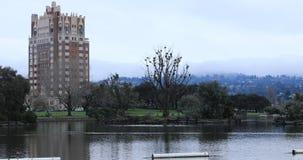 Cena do lago Merritt, Oakland Califórnia 4K vídeos de arquivo