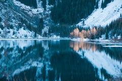 Cena do lago winter com reflexão bonita foto de stock royalty free