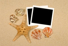 Cena do litoral com estrela do mar e polaroids Imagens de Stock Royalty Free