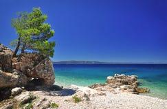 Cena do mar Mediterrâneo do verão por Podgora, Croácia Imagem de Stock Royalty Free