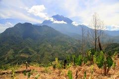 Cena do Monte Kinabalu foto de stock royalty free