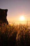 Cena do nascer do sol e mar da névoa no amanhecer Fotografia de Stock Royalty Free