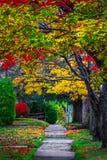 Cena do outono, mudança colorida no meio de outubro em Novo Brunswick, Canadá imagens de stock