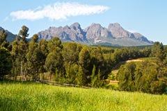 Cena do país com montanhas e vinhedos Fotos de Stock