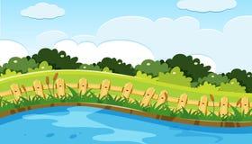 Cena do parque e do lago ilustração do vetor