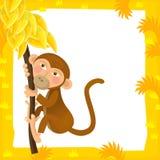 Cena do quadro dos desenhos animados - macaco Imagem de Stock Royalty Free