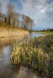 Cena do rio de Oxnead Fotografia de Stock
