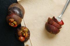 Cena do shell do mangustão Imagens de Stock Royalty Free