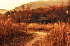 Cena do templo no outono Foto de Stock
