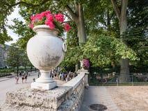 Cena do verão perto da fonte de Medici, Jardin de Luxemburgo, Paris, Imagens de Stock