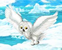 Cena dos desenhos animados - animais árticos - coruja polar Imagem de Stock Royalty Free