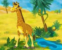 Cena dos desenhos animados - animais selvagens de África - girafa Imagens de Stock