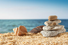 Cena dos seixos, do seashell e do oceano Fotografia de Stock