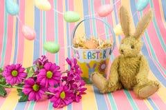 Cena feliz de Easter Coelho, flores e cubeta Fotos de Stock