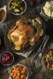 Cena hecha en casa de Turquía de la acción de gracias Fotografía de archivo