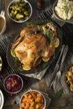 Cena hecha en casa de Turquía de la acción de gracias Fotos de archivo