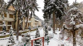 Cena idílico do inverno com neve foto de stock royalty free