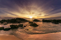 Cena impressionante da praia do cão do sol imagens de stock royalty free