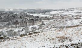 Cena inglesa da paisagem do inverno fotos de stock
