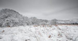 Cena inglesa da paisagem do inverno imagens de stock