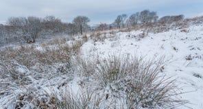 Cena inglesa da paisagem do inverno fotografia de stock