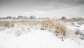 Cena inglesa da paisagem do inverno imagem de stock