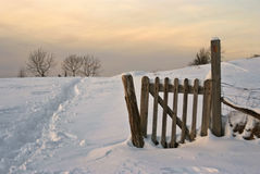 Cena invernal do campo no crepúsculo Fotos de Stock Royalty Free