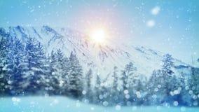 Cena invernal do Natal da floresta Imagem de Stock Royalty Free
