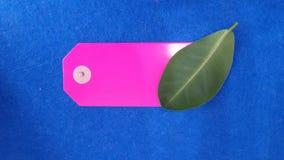 Cena liść i majcher Zdjęcia Stock