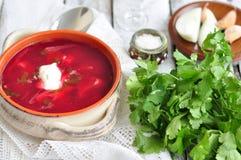 Cena, minestra ucraina dal borsch delle verdure Immagine Stock Libera da Diritti