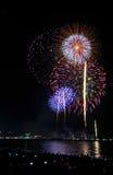 Cena multicolorido da noite dos fogos-de-artifício Fotos de Stock