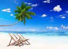 Cena Não-urbana da praia tropical no verão Imagens de Stock