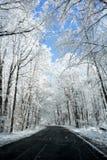 Cena nevado da estrada do inverno Fotos de Stock