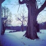Cena nevado da exploração agrícola em Cincinnati Ohio imagem de stock royalty free