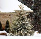Cena nevando do inverno com casas e árvores no fundo Imagens de Stock