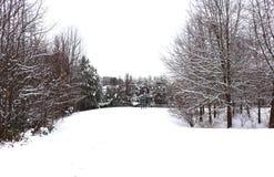 Cena pitoresca da neve no inverno fotografia de stock